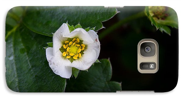 Galaxy Case featuring the photograph White Flower by Glenn DiPaola
