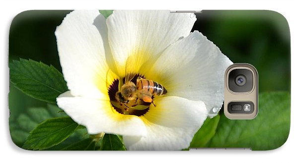Galaxy Case featuring the photograph White Flower- Nectar by Darla Wood