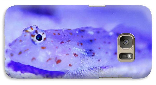 Galaxy Case featuring the photograph White Gobie by Puzzles Shum