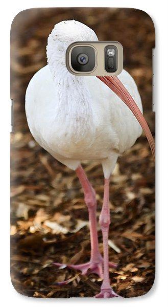 Ibis Galaxy S7 Case - White Ibis by Adam Romanowicz
