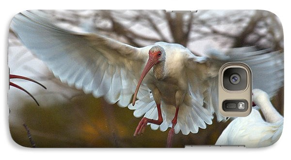White Ibis Galaxy S7 Case by Mark Newman