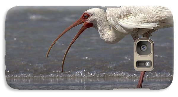 Galaxy Case featuring the photograph White Ibis On The Beach by Meg Rousher