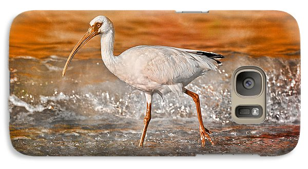 Ibis Galaxy S7 Case - White Ibis Stroll by Betsy Knapp