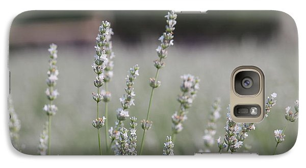 Galaxy Case featuring the photograph White Lavender by Lynn Sprowl