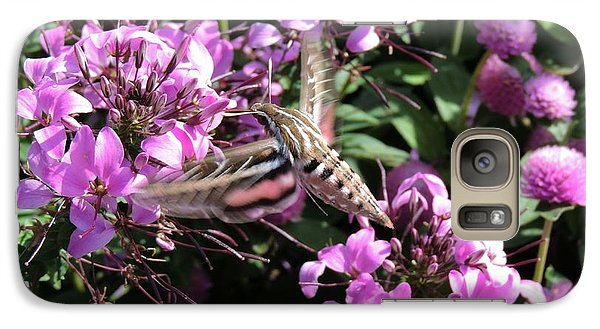 Galaxy Case featuring the photograph White-lined Sphinx Moth by Teresa Schomig