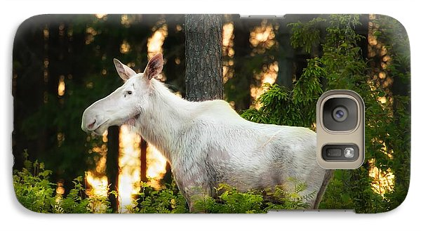 Galaxy Case featuring the photograph White Moose In Sunset by Rose-Maries Pictures