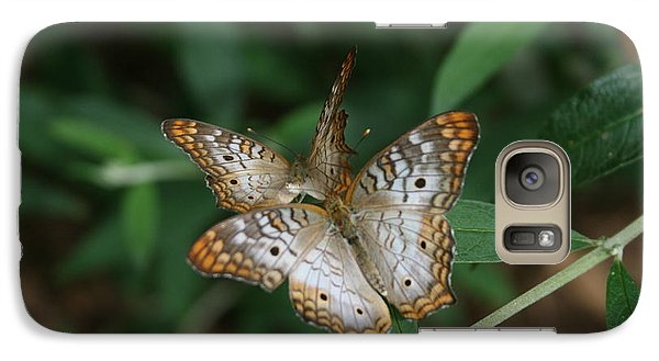 Galaxy Case featuring the photograph White Peacock Butterflies by Cathy Harper