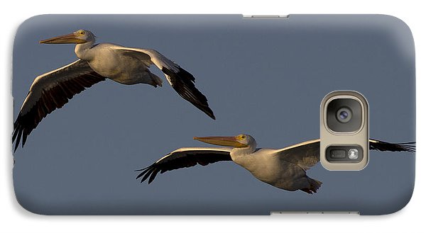 Galaxy Case featuring the photograph White Pelican Photograph by Meg Rousher