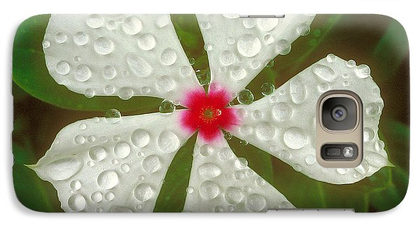 Galaxy Case featuring the photograph White Periwinkle by Mark Greenberg