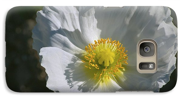 Galaxy Case featuring the photograph White Poppy by Rima Biswas