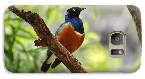 Galaxy Case featuring the photograph White-rumped Shama by Craig Wood