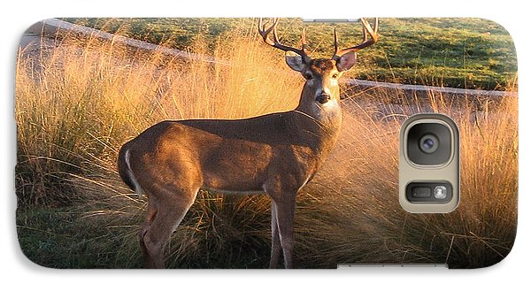 Galaxy Case featuring the photograph White Tail by John Johnson