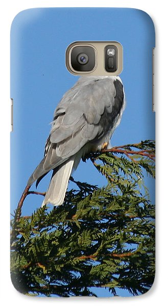 Galaxy Case featuring the photograph White-tailed Kite Perching by Bob and Jan Shriner