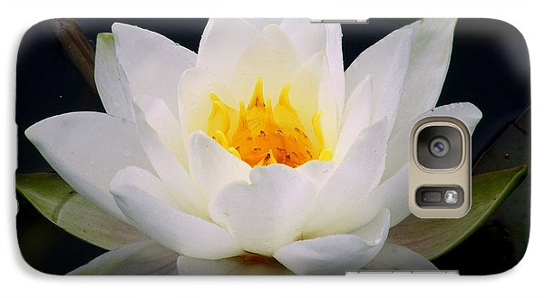 Galaxy Case featuring the photograph White Water Lily by Nina Ficur Feenan