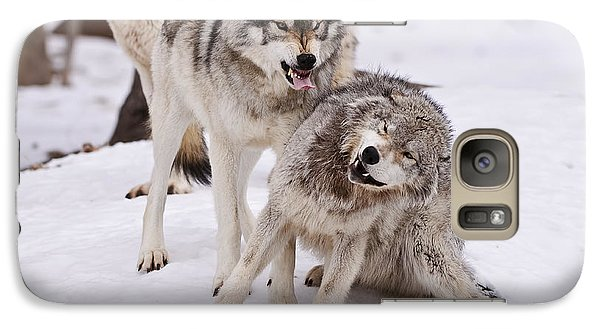 Galaxy Case featuring the photograph Who's The Boss by Wolves Only