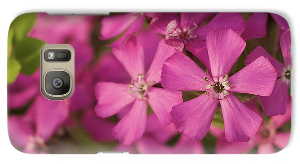 Galaxy Case featuring the photograph Wild About Pink - Pink Wildflower Art Print by Jane Eleanor Nicholas