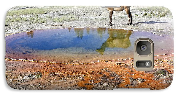 Galaxy Case featuring the photograph Wild And Free In Yellowstone by Teresa Zieba