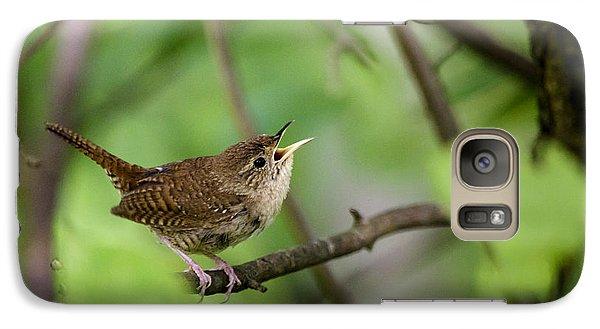 Wild Birds - House Wren Galaxy S7 Case by Christina Rollo