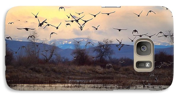 Galaxy Case featuring the photograph Wild Ducks And Geese by Lynn Hopwood