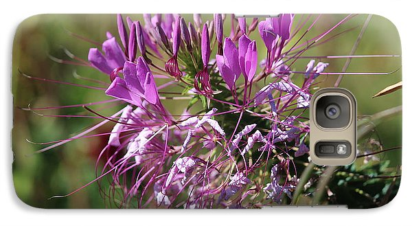 Galaxy Case featuring the photograph Wild Flower by Cynthia Snyder