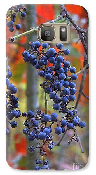 Galaxy Case featuring the photograph Wild Grapes by Jim McCain