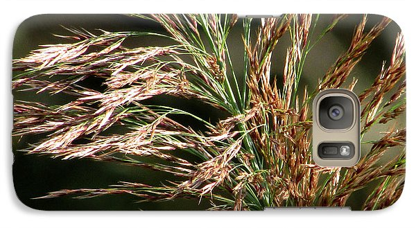 Galaxy Case featuring the photograph Wild Grasses I by Kimberly Mackowski