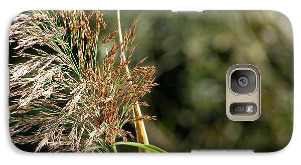Galaxy Case featuring the photograph Wild Grasses II by Kimberly Mackowski