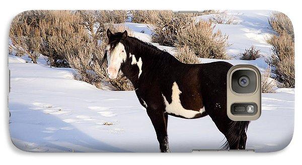 Wild Horse Stallion Galaxy S7 Case