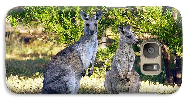 Galaxy Case featuring the photograph Wild Kangaroos by Stuart Litoff