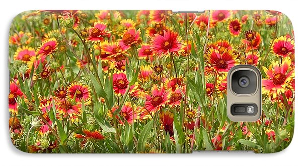Galaxy Case featuring the photograph Wild Red Daisies #1 by Robert ONeil