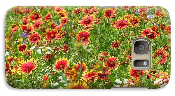 Galaxy Case featuring the photograph Wild Red Daisies #3 by Robert ONeil