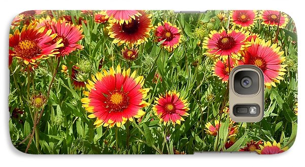Galaxy Case featuring the photograph Wild Red Daisies #4 by Robert ONeil