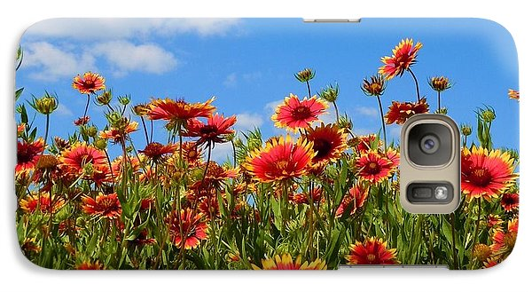 Galaxy Case featuring the photograph Wild Red Daisies #7 by Robert ONeil