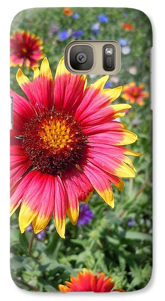 Galaxy Case featuring the photograph Wild Red Daisy #1 by Robert ONeil