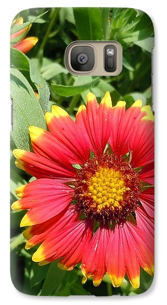 Galaxy Case featuring the photograph Wild Red Daisy #2 by Robert ONeil