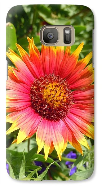 Galaxy Case featuring the photograph Wild Red Daisy #3 by Robert ONeil