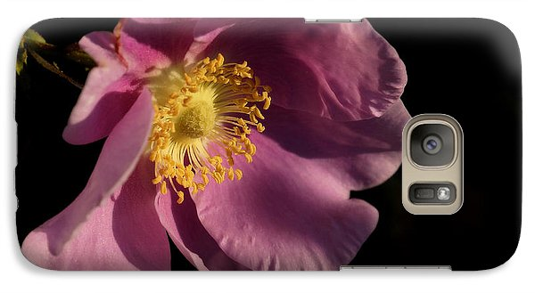 Galaxy Case featuring the photograph Wild Rose by Inge Riis McDonald