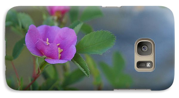 Galaxy Case featuring the photograph Wild Rose by Jenessa Rahn
