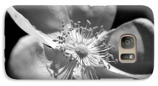 Galaxy Case featuring the photograph Wild Rose by Kelly Nowak
