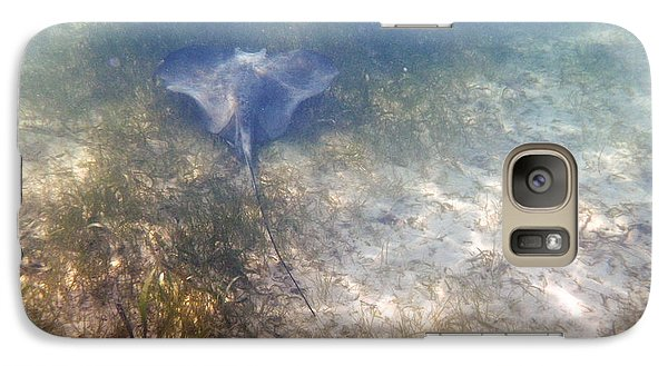 Galaxy Case featuring the photograph Wild Sting Ray by Eti Reid