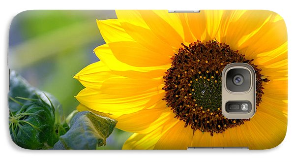 Galaxy Case featuring the photograph Wild Sunflower by Nadalyn Larsen