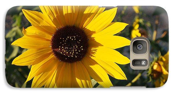 Wild Sunflower Galaxy S7 Case