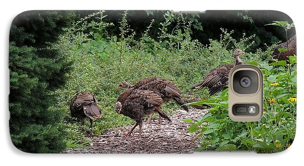 Galaxy Case featuring the photograph Wild Turkey Family by Teresa Schomig