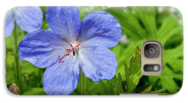 Galaxy Case featuring the photograph Wildflower by Rod Wiens