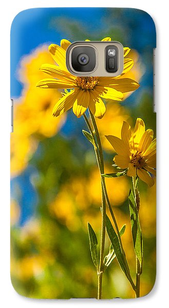 Pasture Galaxy S7 Case - Wildflowers Standing Out by Chad Dutson