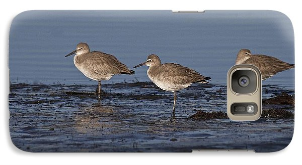 Galaxy Case featuring the photograph Willet's In The River by Ruth Jolly