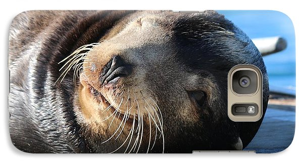 Galaxy Case featuring the photograph Wink Wink by Christy Pooschke