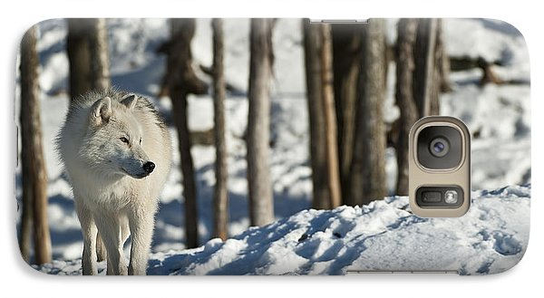 Galaxy Case featuring the photograph Winter Arctic Wolf by Wolves Only