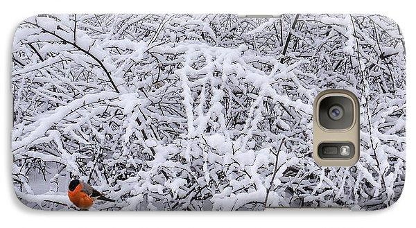 Galaxy Case featuring the photograph Winter Birds by Vladimir Kholostykh