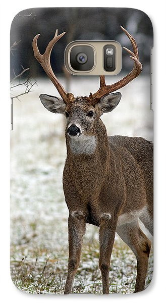Galaxy Case featuring the photograph Winter Buck by Timothy McIntyre